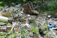 Выявлено 97 свалок твердых отходов на общей площади 105 га.