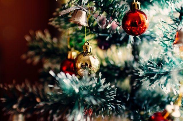В Салехарде приступили к установке главной новогодней елки