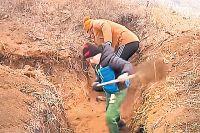 Школьники из Мариуполя вместо уроков копают окопы.