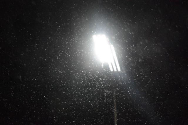 В новосибирском Академгородке появились безопасные инновационные фонари
