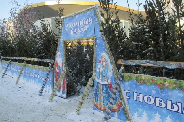 Елочные базары открылись 1 декабря.