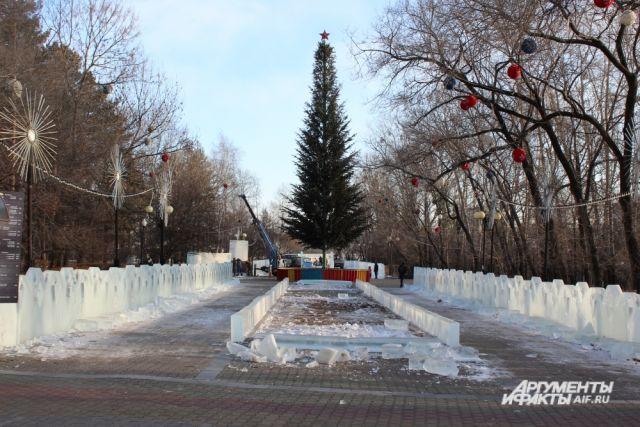 Главное хвойное дерево Хабаровска состоит из 168 натуральных елей.
