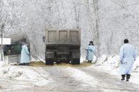 В Херсонской области из-за опасного насекомого объявили карантин
