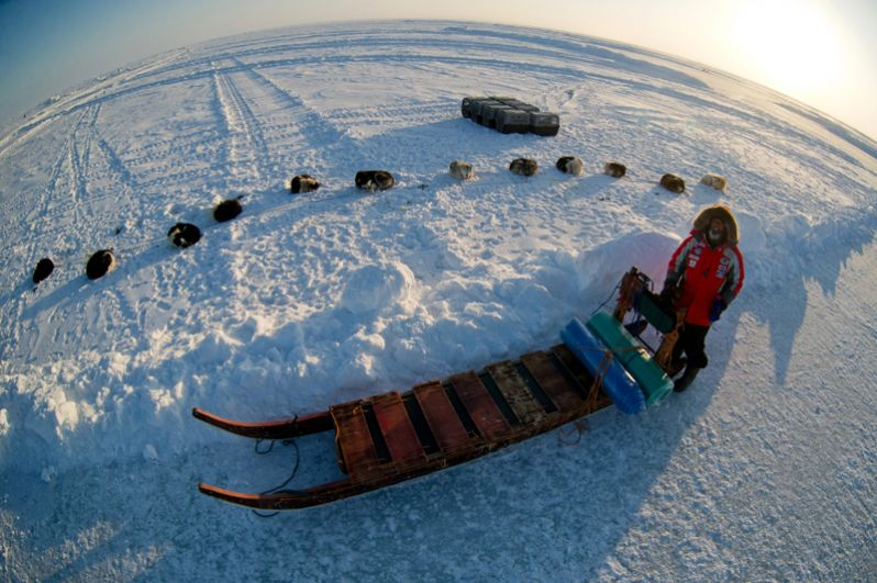 Федор Конюхов во время экспедиции на собачьих упряжках из Карелии до южной оконечности острова Гренландия через Северный полюс. 2013 год.