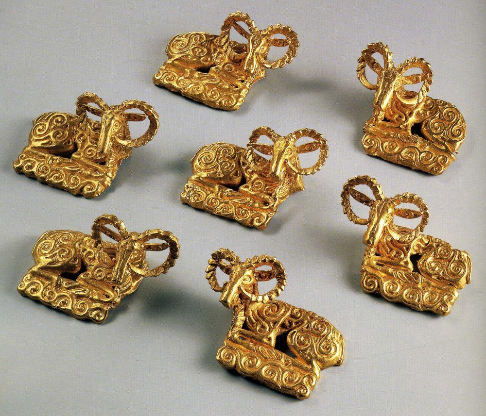 Золотые архары.