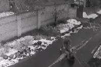 В Николаеве грабитель посреди улицы набросился на женщину и начал ее душить