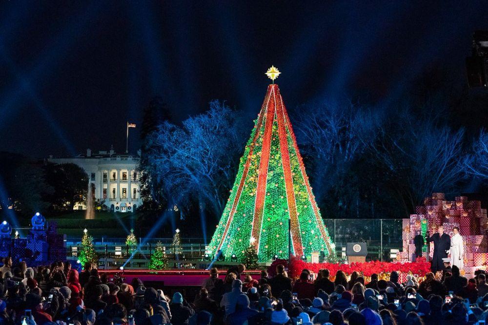Главная рождественская елка в парке перед Белым домом в Вашингтоне, США.