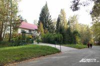 Академгородок в Новосибирске окружён лесами.