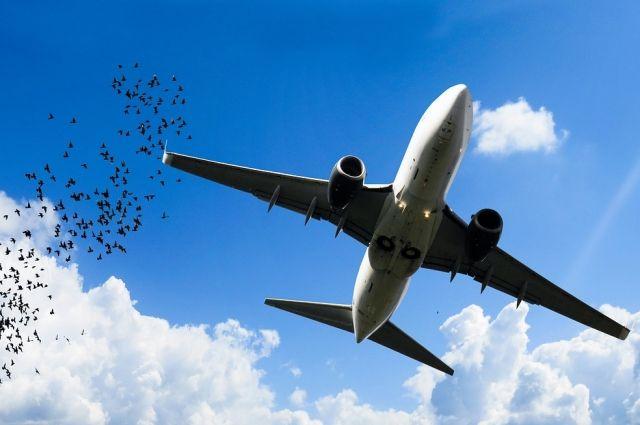 Это уже не первый инцидент с данной авиакомпанией.