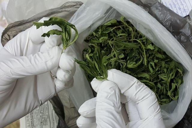 В поле полиция задержала тюменца с двумя пакетами марихуаны