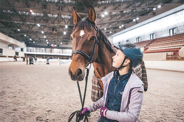 В «Битце» построят несколько конных манежей, чтобы проводить соревнования мирового уровня.