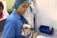 В ямальском чемпионате WorldSkills Russia участвуют ветеринары-юниоры
