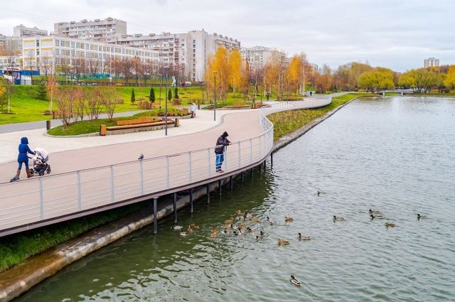 Парк в пойме реки Битцы.