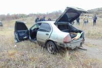 В Николаевской области полсотни фермеров с погоней поймали воров из Одессы