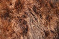 В зоопарке принимают изделия из натуральных мехов.