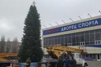 В Черноморске с главной елки похитили гирлянду.