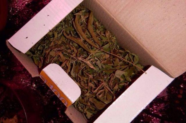 В машине у тюменца нашли 2,5 кг марихуаны