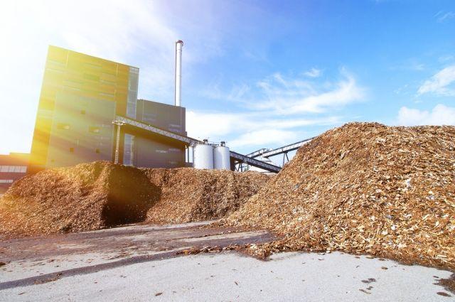Гонят из опилок. Что за биотопливо изобрели наши учёные?
