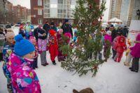 Новогодний праздник новосибирцы отметили  весело.