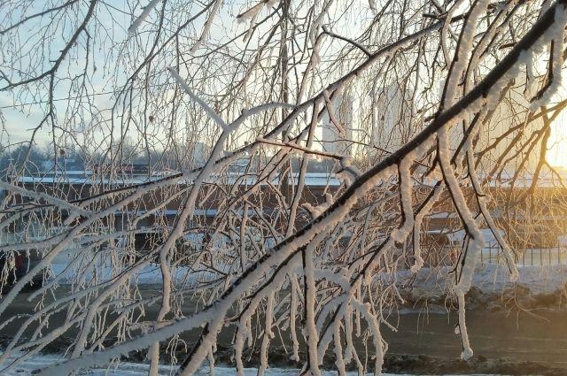 В краевой столице сохраняется сильная изморозь на проводах 35 мм и более.