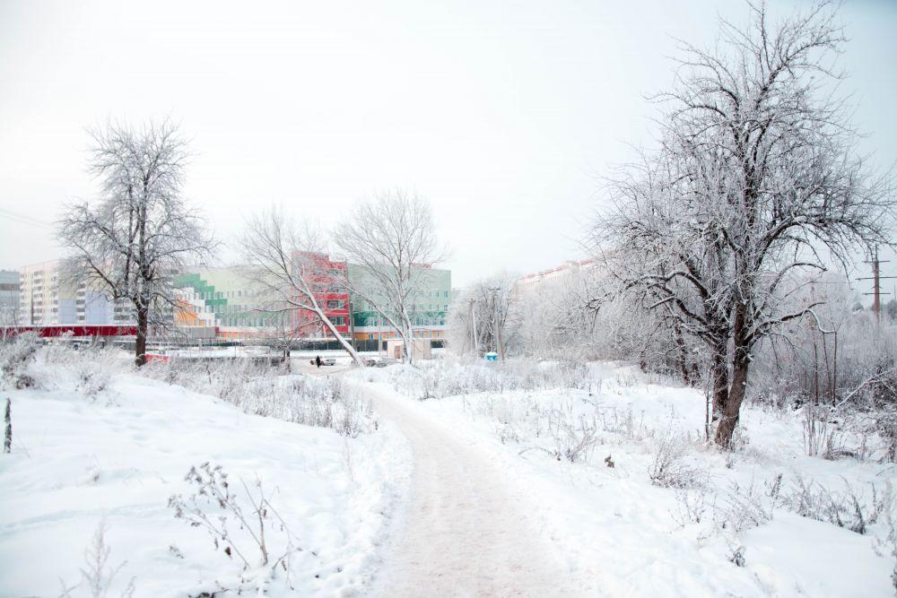 Тарантул ростовская область фото кто современных