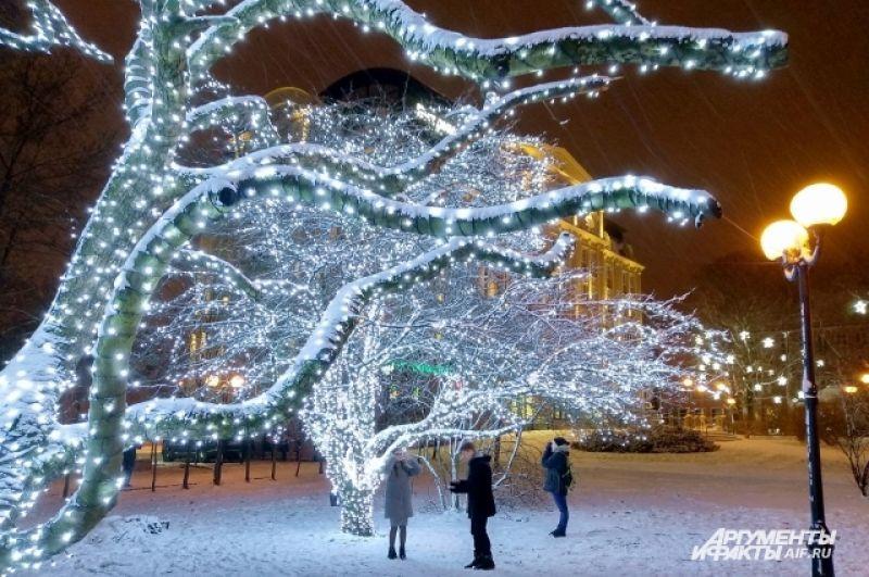 Сказочные деревья возле стадиона «Балтика».