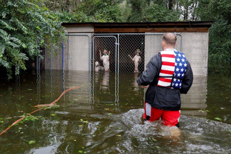Доброволец спасает собак, брошенных хозяевами в доме после урагана «Флоренс» в Леланде, Северная Каролина, США, 16 сентября 2018 года.