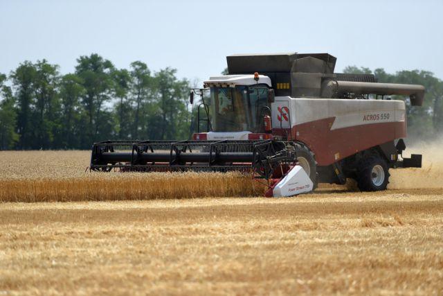 Для предприятия 2018 год стал рекордным по валовому сбору зерновых.