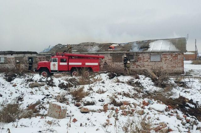 Под Харьковом произошел масштабный пожар на ферме: погибли 50 свиней