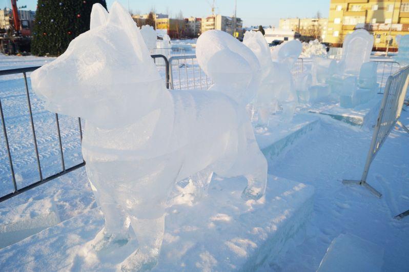 Ледяные хаски...