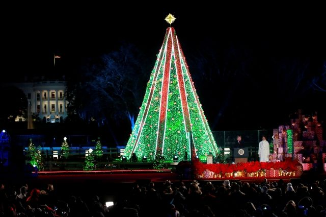 ВСША неизвестный забрался нарождественскую ель уБелого дома