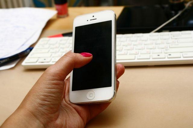 Хабаровчанину запретили продавать айфоны.
