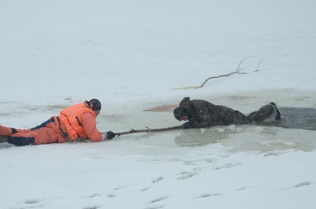 Пять случаев провала под лед за неделю.
