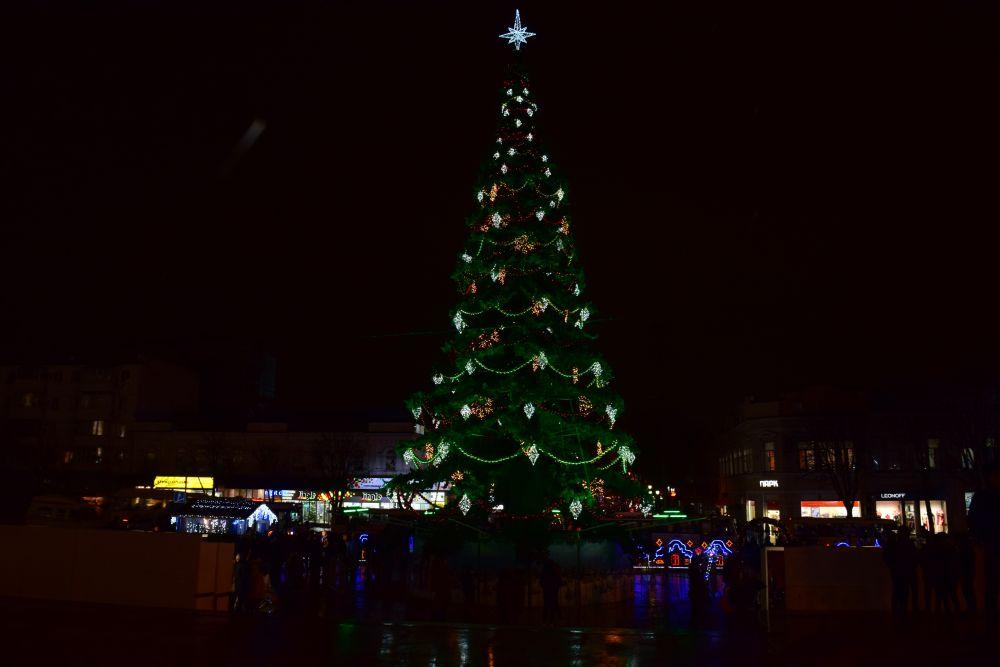 Новогодняя елка в Симферополе.