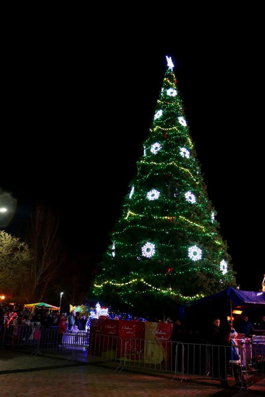 Новогодняя елка в Керчи.