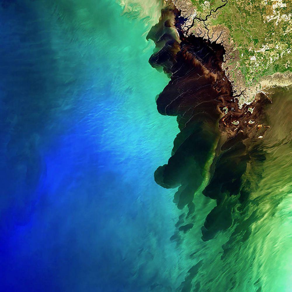 Устье реки Сувани, известной как «река черных вод». Темно-коричневый оттенок воды обусловлен насыщенностью органическими компонентами.