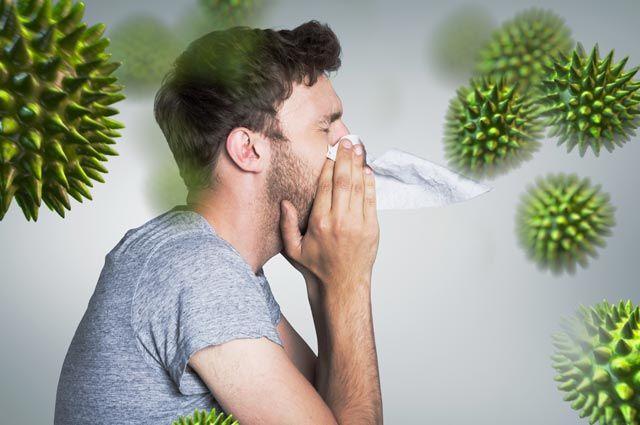 Мышиная лихорадка в Саратове: симптомы у мужчин и женщин, взрослых и детей