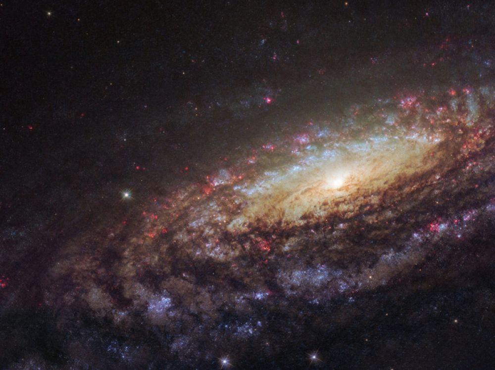 Галактика NGC 7331, удивительно похожая на Млечный Путь. Снимок сделан с помощью телескопа «Хаббл».