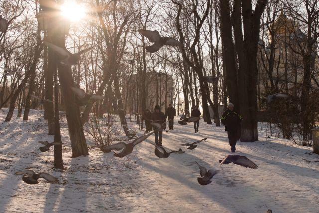 Погода разная на проявления, а птиц и в холода кормить важно.