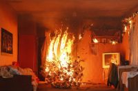 Спасатели перечислили правила безопасного пользования новогодней елкой