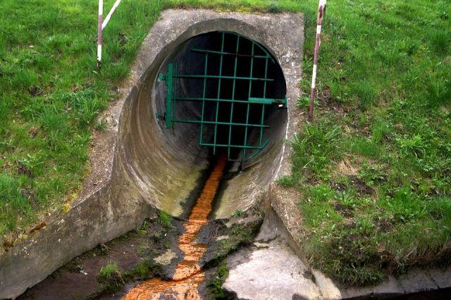 Предприятие сбрасывало сточные воды в реку Люга.
