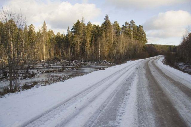 25 декабря экипаж ДПС во время патрулирования на 56-м километре федеральной дороги Екатеринбург-Шадринск-Курган обнаружил пешехода.