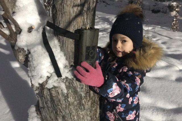 Дочка Дениса помогает устанавливать фотоловушки.