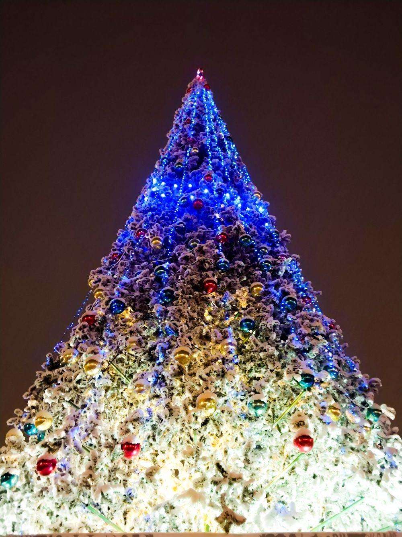 Сразу же захватывает внимание ёлка. Вокруг нее традиционно установлены новогодние иллюминации, занимающие практически все пространство. В зимние праздники оформление дополнится сувенирными лавками и платными аттракционами.