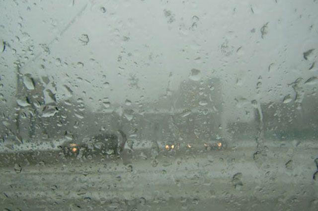 В Украине местами пройдет сильный ливень