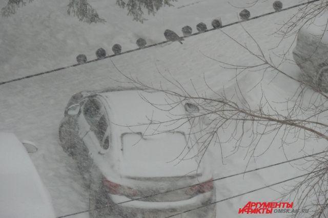 В Тюмени будут чистить снег в усиленном режиме