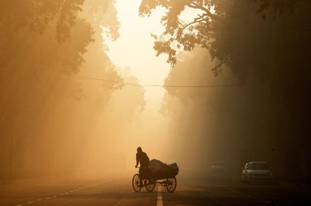 Мужчина едет на рикше утром в Нью-Дели, Индия.