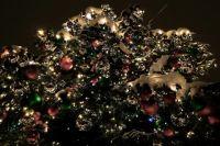 Ноябрян приглашают в новогоднюю ночь в Детский парк на гуляния
