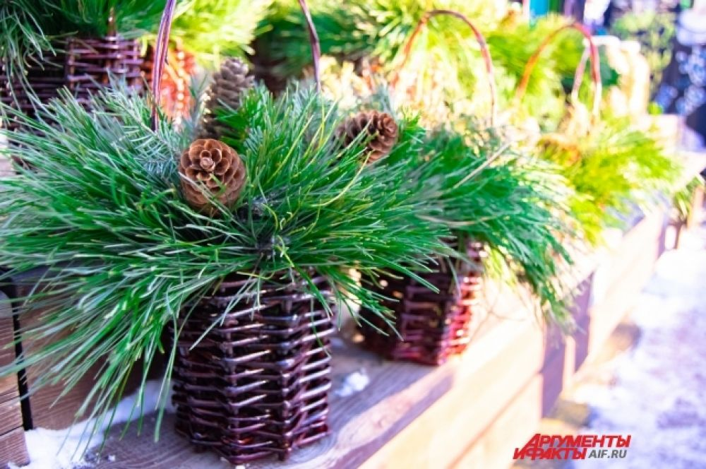А те, кто не хочет ставить домой целое дерево, могут приобрести еловые или кедровые ветки.