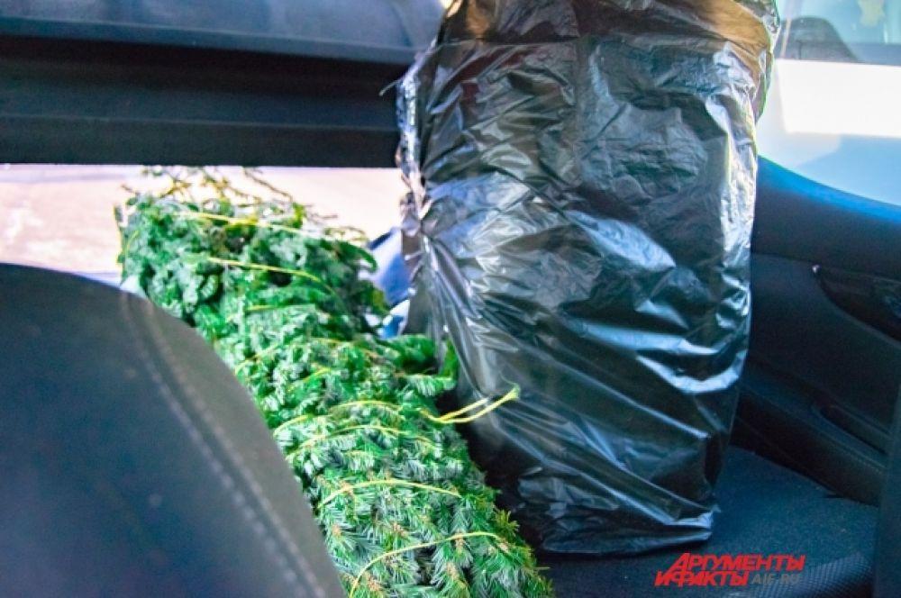 В машину поместится далеко не каждая ёлка.